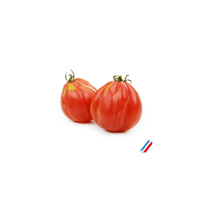Tomates cœur de bœuf bio